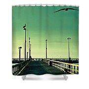 Pelican On Watch Duty Shower Curtain