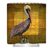 Pelican Poetry Shower Curtain