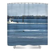 Pelican Porpoise And Fishermen Shower Curtain