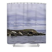Pelican Race Shower Curtain