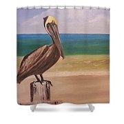 Pelican Rest Stop Shower Curtain
