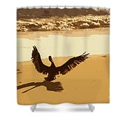 Pelican Spreads It's Wings Shower Curtain