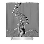 Pelican Stoop Shower Curtain
