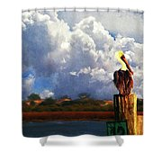 Pelican Storms Shower Curtain