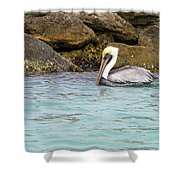 Pelican Trolling Shower Curtain