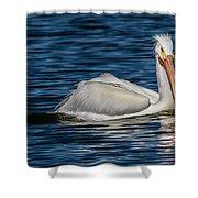 Pelican Wake Shower Curtain
