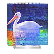 Pelican With Blue Shower Curtain