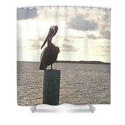 Pelican Zen Shower Curtain