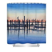 Pelicans At Dusk Shower Curtain