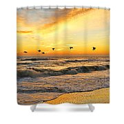 Pelicans At Sunrise  Signed 4651b 2  Shower Curtain
