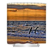 Pelicans Crusing The Coast Shower Curtain