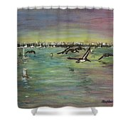 Pelicans Fly Shower Curtain