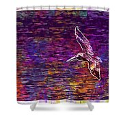 Pelikan Bird Brown Pelican  Shower Curtain
