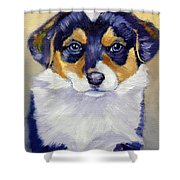 Pembroke Welsh Corgi Pup Shower Curtain