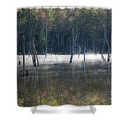 Pemigewasset Wilderness - White Mountains New Hampshire Usa Shower Curtain