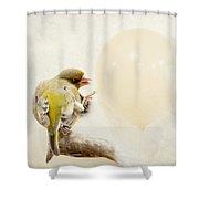 Peng Shower Curtain