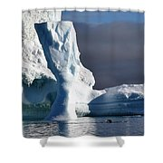 Penguin And Ice Shower Curtain