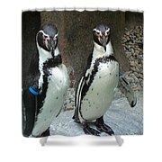 Penguin Duo Shower Curtain