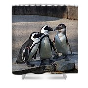 Penguin Embracing Shower Curtain