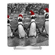 Penguins With Santa Claus Caps Shower Curtain