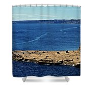 Peninsula De Valdez Shower Curtain