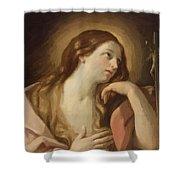 Penitent Mary Magdalene Shower Curtain