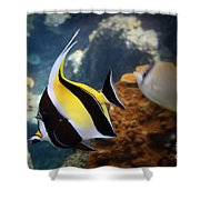 Pennant Coralfish Shower Curtain