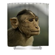 Penny For Your Thoughts Shower Curtain