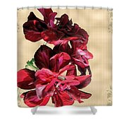 Penny Postcard Shower Curtain