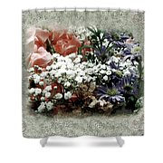 Penny Postcard Romantica Shower Curtain