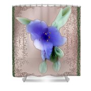 Penny Postcard Wildflower Shower Curtain