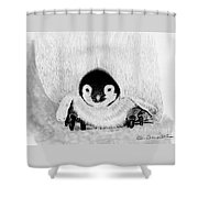 Penquin Chick Shower Curtain