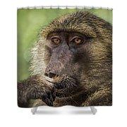 Pensive Baboon Shower Curtain