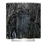 Penumbra Shower Curtain