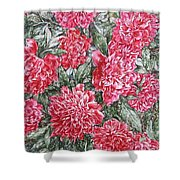 Peonies Love Shower Curtain