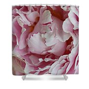 Peony Close Up Shower Curtain
