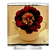 Peony In A Tea Kettle Shower Curtain