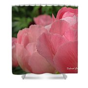 Peony Lineup Shower Curtain