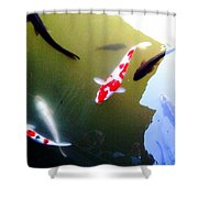 People In The Pond Shower Curtain