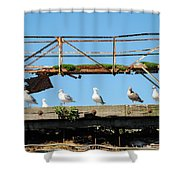 People Watchers Shower Curtain