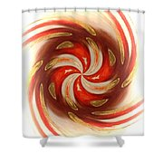 Pepermint Swirl Shower Curtain