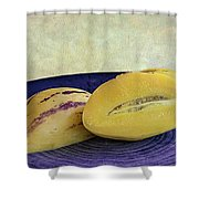Pepino Melon Shower Curtain