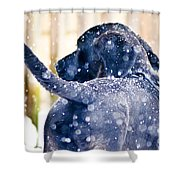 Pepper And The Snow Storm Shower Curtain