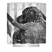 Pepper At Snow Shower Curtain