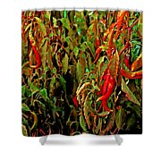 Peppers - Red Shower Curtain
