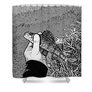 Perch Black And White Shower Curtain