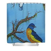 Perched 2 Shower Curtain