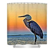 Perdido Crain Shower Curtain