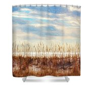 Perdido Painted  Shower Curtain