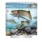 Perfect Drift Rainbow 2 Shower Curtain